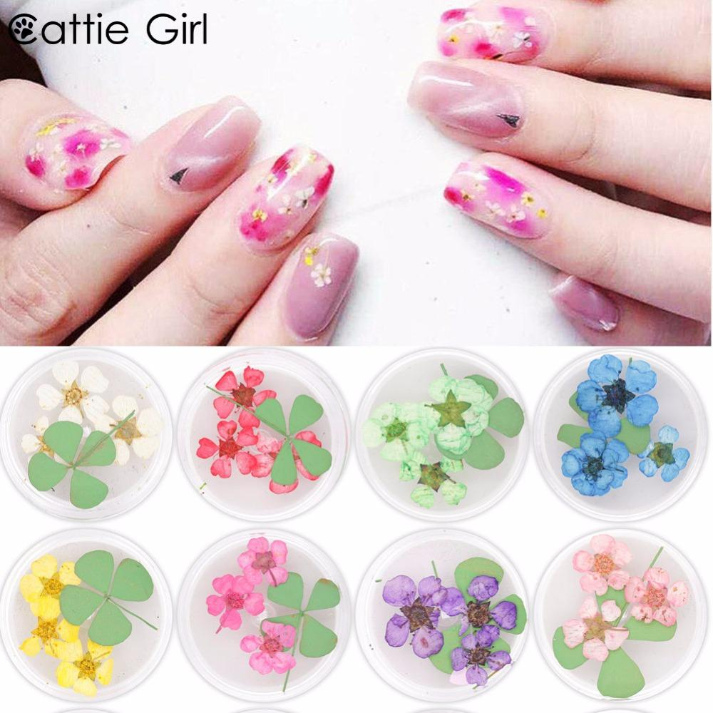 1 Box Mixed Natural Dried Flower 3d Nail Decoration Real Preserved
