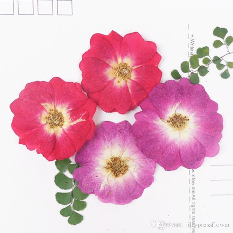 a9336ff18a5e Compre 2018 Flores De Pétalos De Rosas En Forma De Corazón Chino Rosa  Regalos