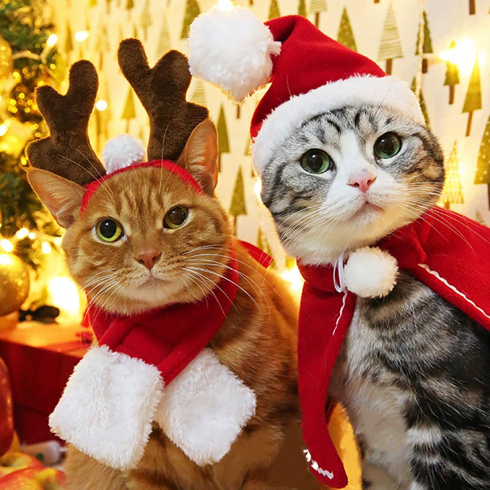 2019 funny christmas suit for cats hat scarfs costume for dogs