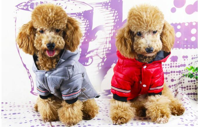 XS-XL الخريف الشتاء الدافئة للماء الملابس للكلاب الصغيرة تشيهواهوا الدافئة أسفل سترة الكلب معطف هوديس الحيوانات جرو الكلب الملابس مع قبعة