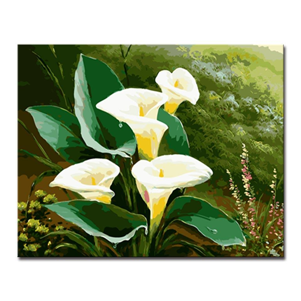 Diy Oil Painting By Numbers Kits Coloring Handpainted Home Decor Calla Lily Flowers Green Leaves Canvas Pictures Wall Art Framed