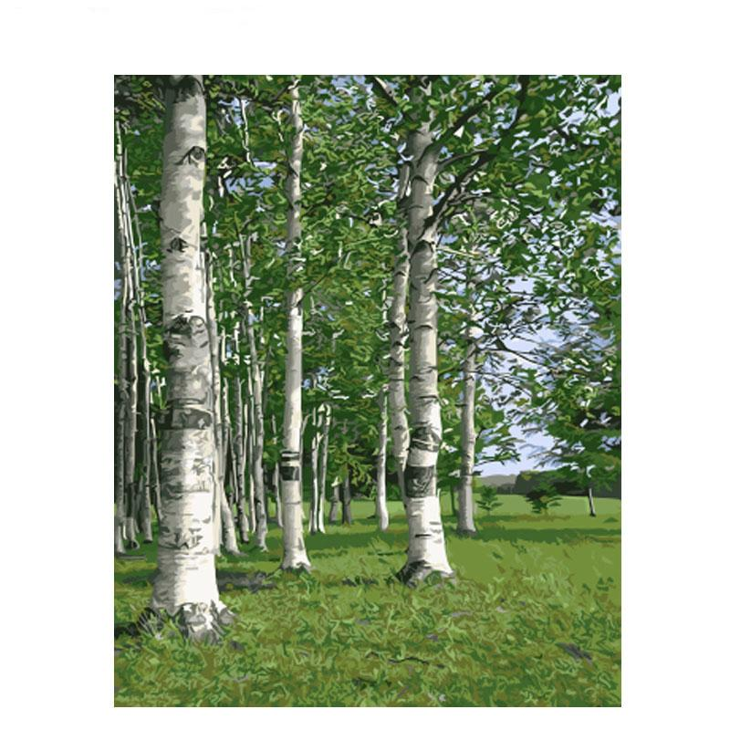 Frameless Birch Forest Diy Painting By Numbers Landscape Modern Wall Art Picture Paint By Numbers For Home Decor Drop