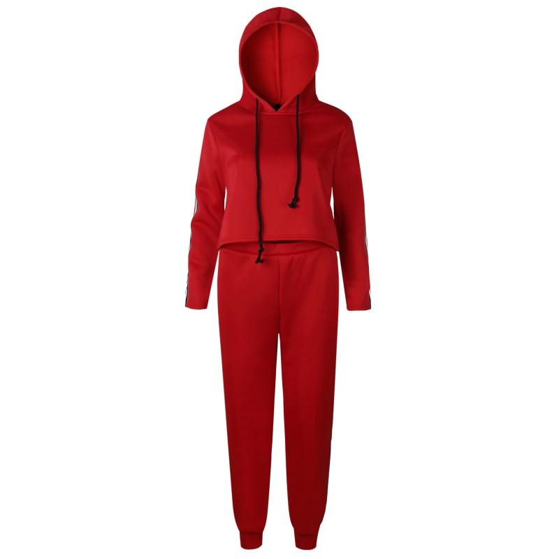 2017 Autumn Clothing Set Women Tops And Pants Suit Ladies Leisure Two Piece Tracksuit