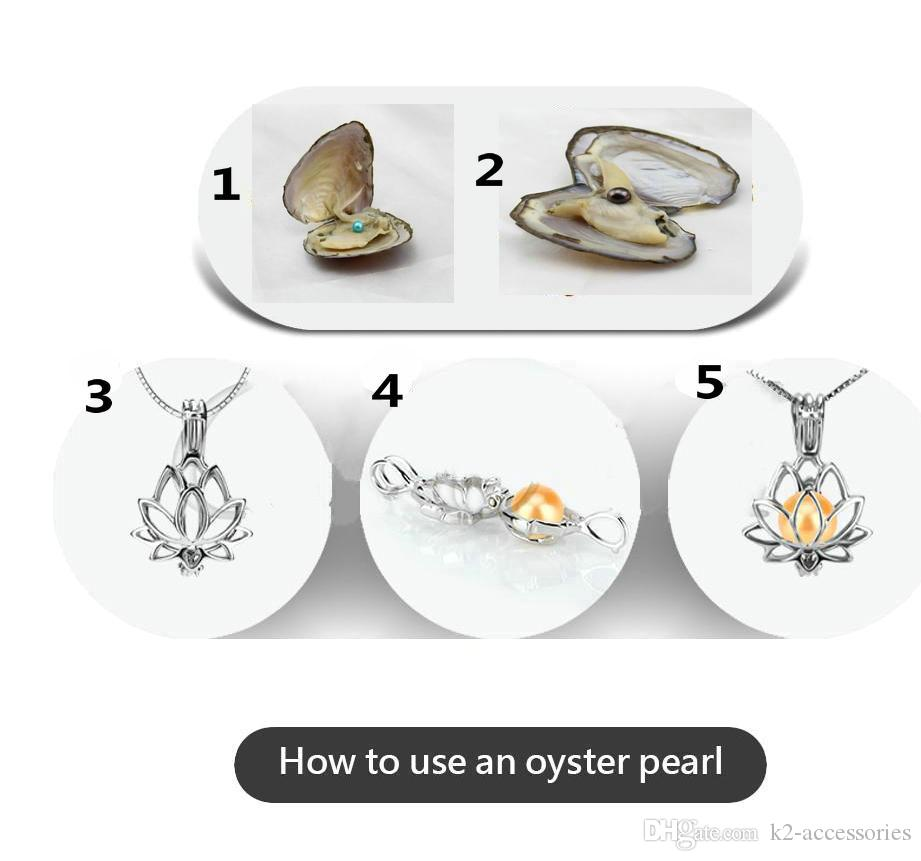 ROUND Akoya pearl oyster freshwater shell pearl oyster 6-7mm ROUND red gray purple light blue pearl oyster vacuum packaging
