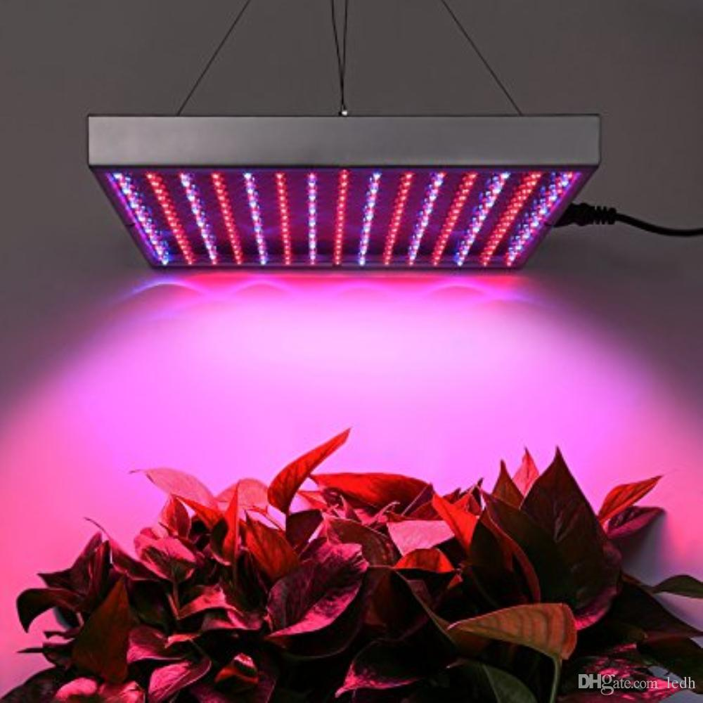 225 leds14w led plant grow light for hydroponics indoor greenhouse 225 leds14w led plant grow light for hydroponics indoor greenhouse plantsvegetable and flower greenhouses plant seedling lamp growing light high pressure arubaitofo Gallery