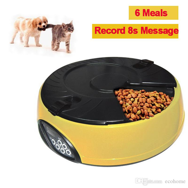 cat station electronic flexzion automatic trays puppy dog timer lcd pet supplies meals animal bowls food water pin programmable yellow container feeder with