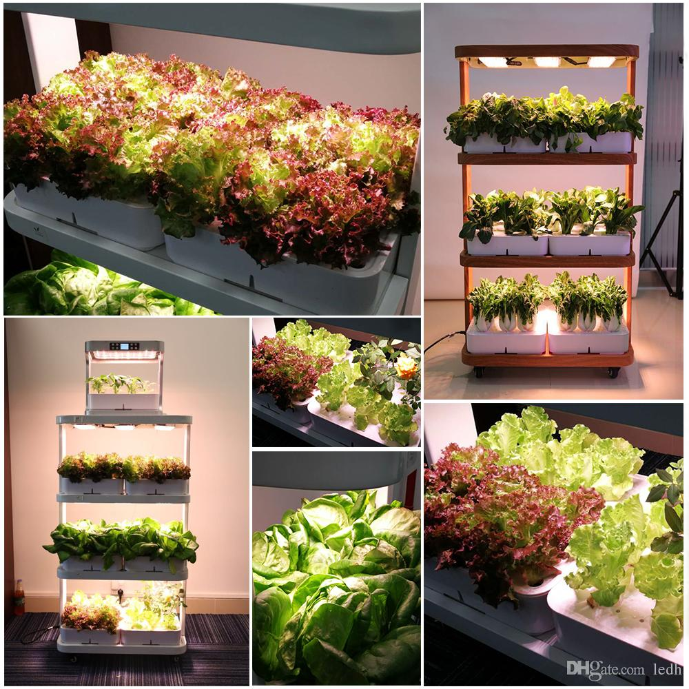 Home Used Hydroponic Growing Systems Smart Mini Garden