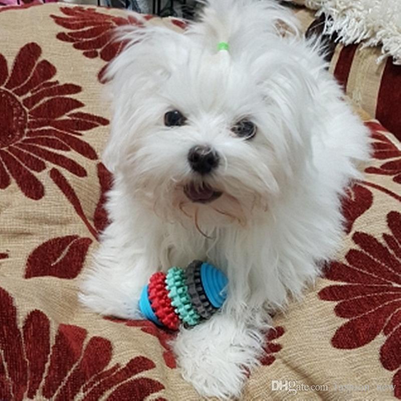 5 styles en caoutchouc chien à mâcher jouets pour petits chiens jouent jouets chiot dents propres gommes outil de formation dentaire santé coloré jouets pour animaux de compagnie