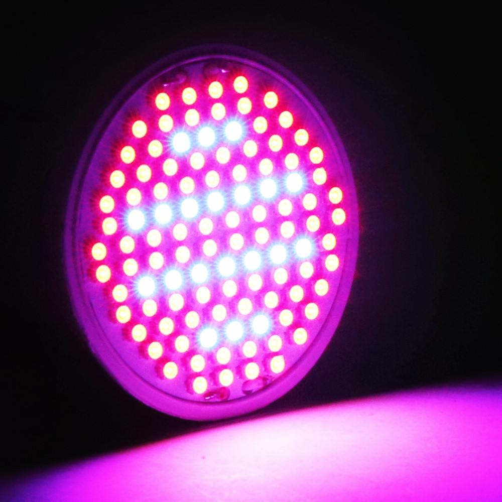 106 Leds Grow Lights 10w E27 Ac85 265v Full Spectrum Indoor Plant Lamp  Hydroponics Growing Lamp Superior Yield Wholesale Indoor Plant Lights Best Led  Grow ...