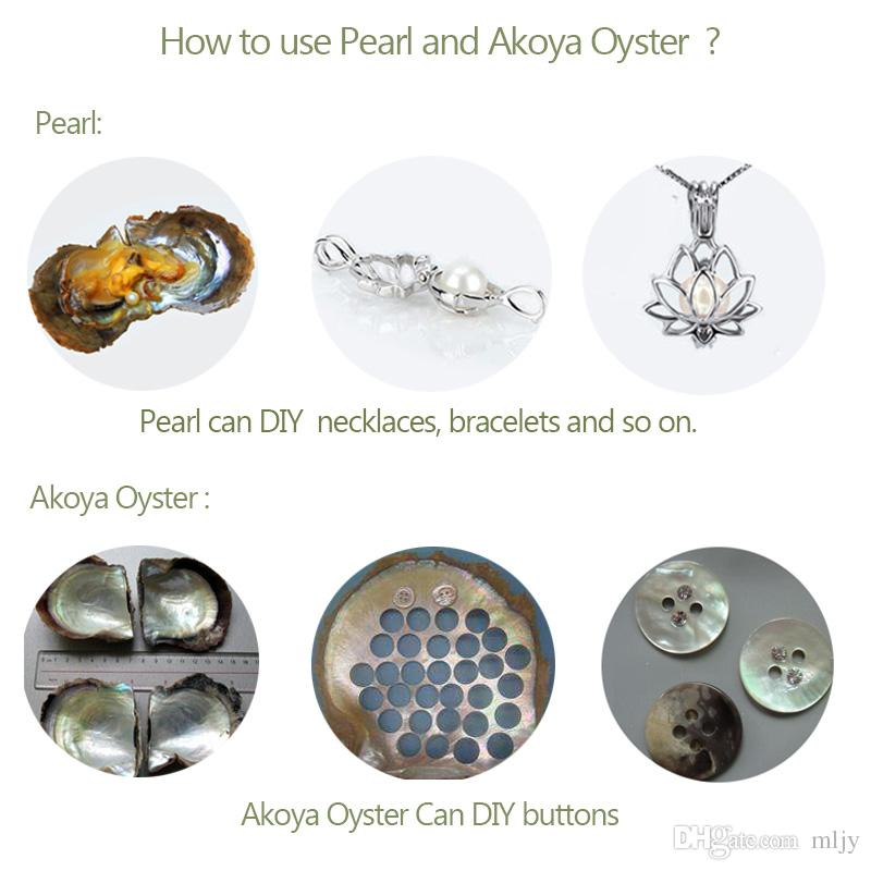 Oyster with Pearl Pearl Pearl in Oysterers Colorate Edison Pearls Large 6-10mm Quad -Triplet -Twin - Single Edison Pearl Shell Gift /