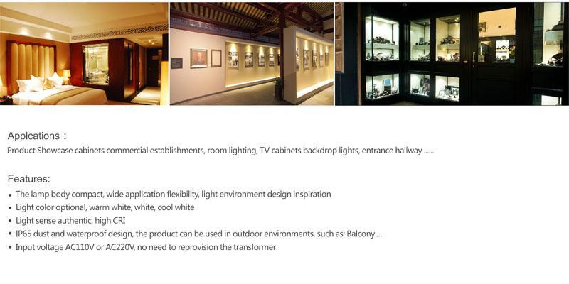 3W 110V 220V 230V 240V IP65 300Lm Mini Led Bulb Downlight Lamp 80Ra Cabinet Lighting Home Interior Outdoor Led Bulb Light