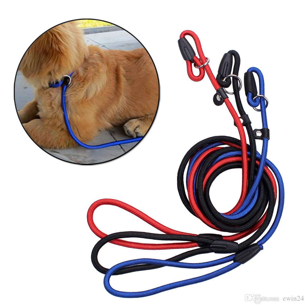 Pet Dog Nylon Adjustable Collar Training Loop Slip Leash Rope Lead Small Size Red Blue Black Color
