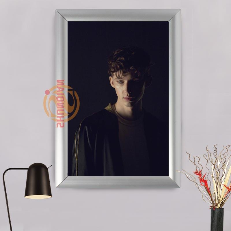 Großhandel Troye Sivan Aluminiumlegierung Malerei Rahmen Home Decor ...