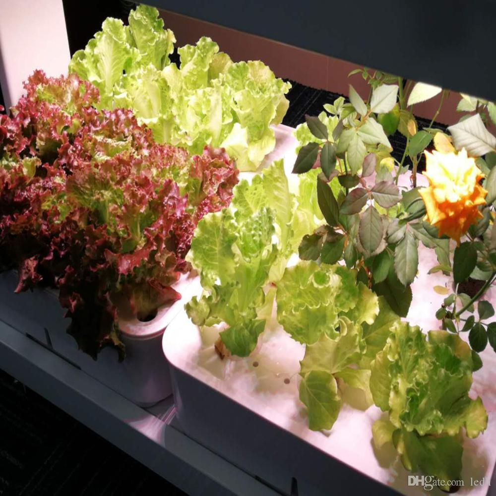wholesale indoor self watering vertical hydroponics grow system,mini garden grow planter Skyplant Hydroponic System to Grow/Greenhouse