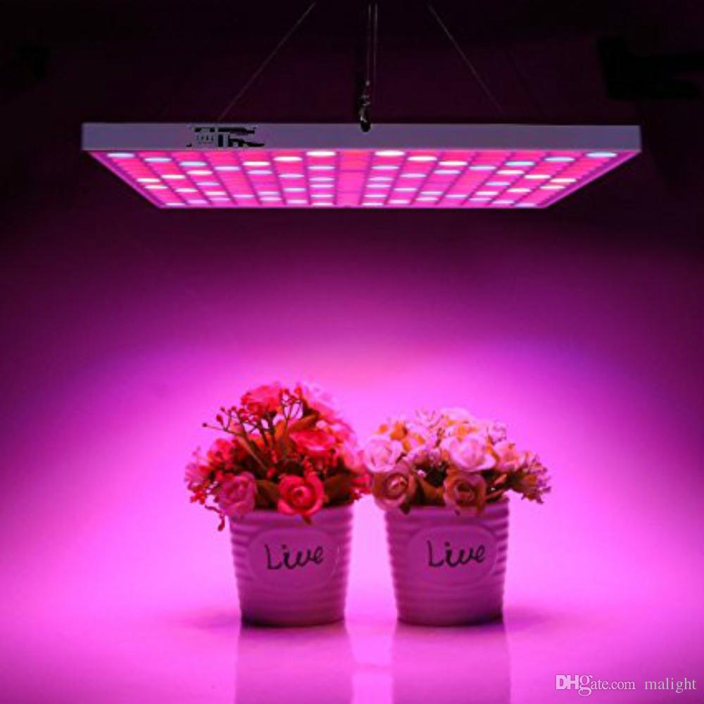 45w led grow light bulbs full spectrum plant growing lamps for 45w led grow light bulbs full spectrum plant growing lamps for indoor plants greenhouse seedlings growing and flowering led grow lighting grow led light arubaitofo Choice Image