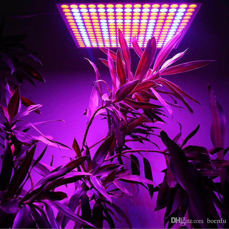 Indoor Garden Lamp 65w led grow lights greenhouse indoor plant lamp 225 leds home 65w led grow lights greenhouse indoor plant lamp 225 leds home hydroponic indoor garden growing flower plant light garden lamps garden led lights from workwithnaturefo