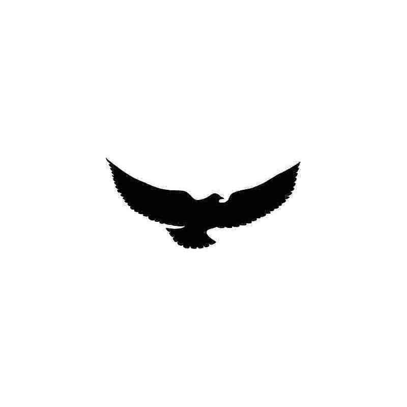 Spread Wings, Flying Eagle, Wings, Car Stickers, Vinyl Car Packaging  Accessories, Product Pattern