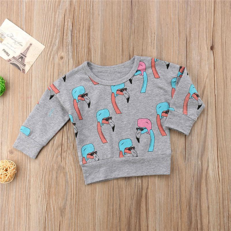 7d871154f 2019 New 2018 Lovely Kids Baby Both Boy And Girl Flamingo Print Gray Long  Sleeve Sweatshirt Jacket Sweater Pullover Clothes 6M 5T From Cover3129, ...
