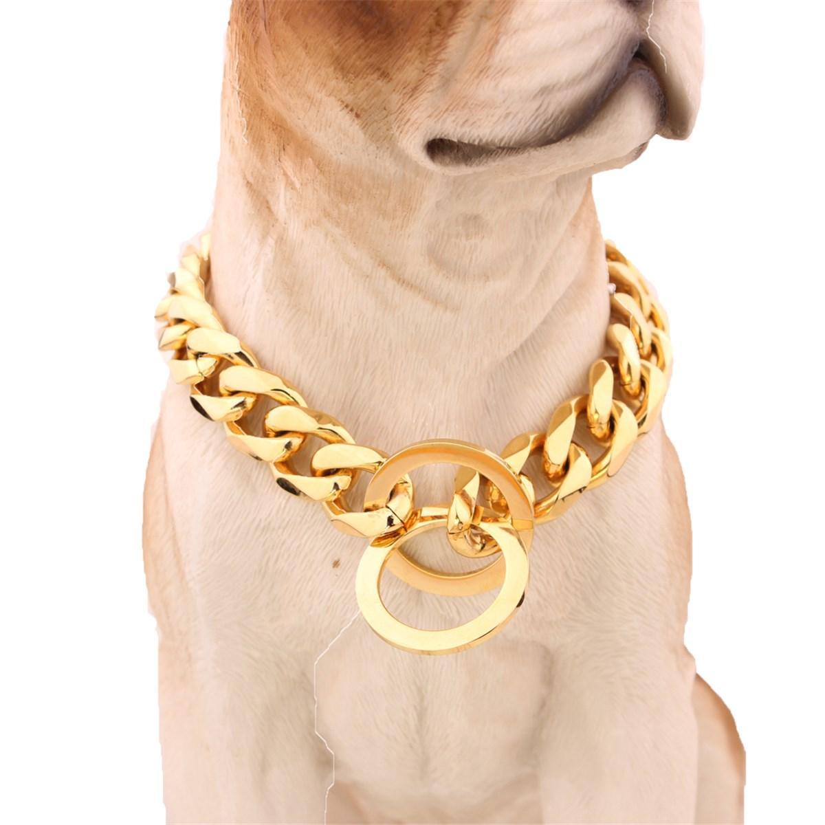 Suprimentos para cães 12-22