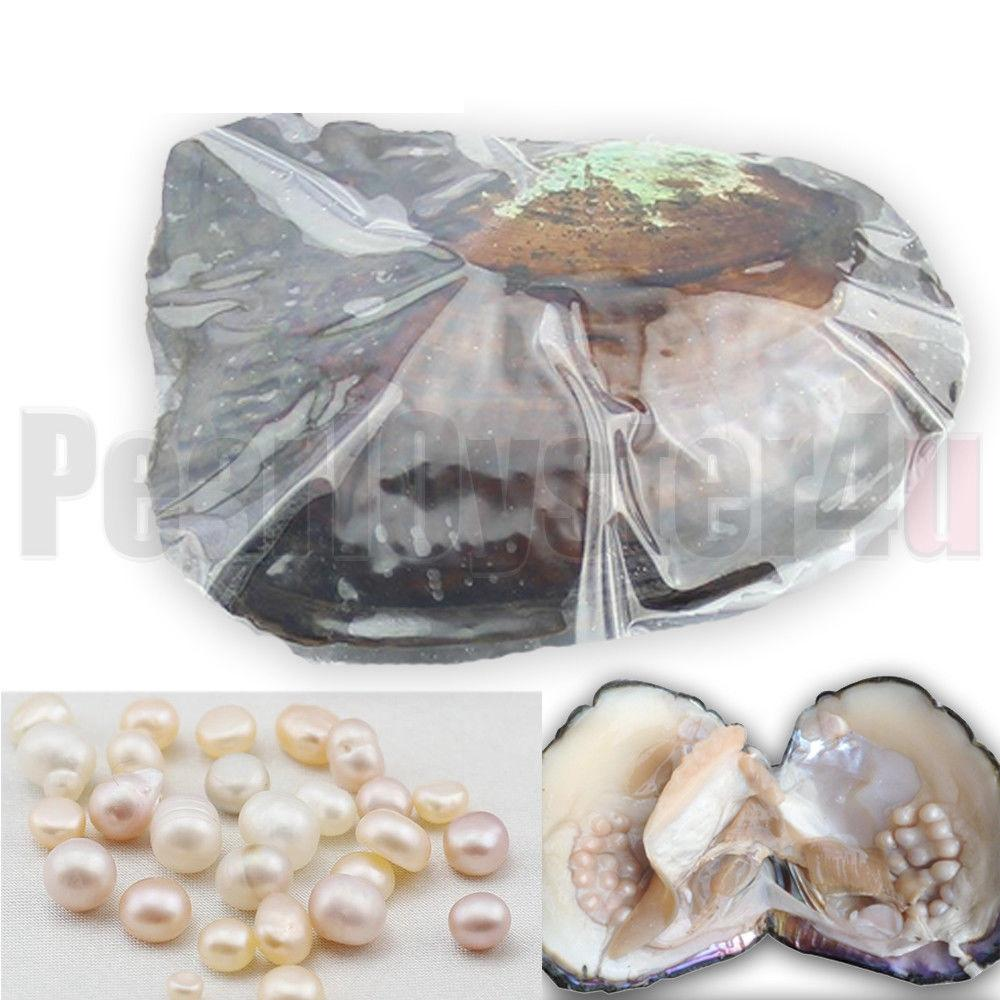 Big Wild Freshwater Oyster Monster 10 years 20-30pcs Natural Color/Shape Pearls Mussel Farm Supply Vacuum Packing 5PCS ZB002