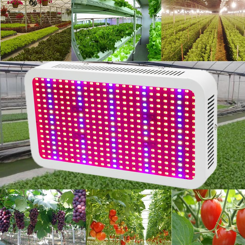 400 Leds Grow Lights Full Spectrum 400w Indoor Plant Lamp