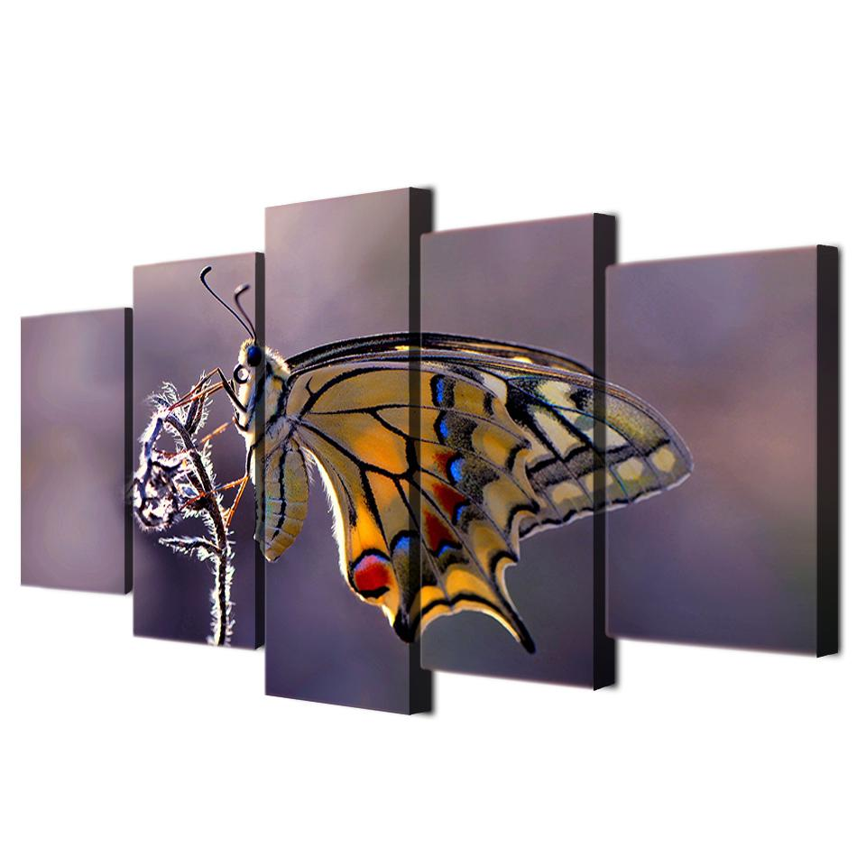 / Set Encadré HD Imprimé Papillon Photographie Mur Art Toile Impression Affiche Toile Photos Abstraite Peinture À L'huile
