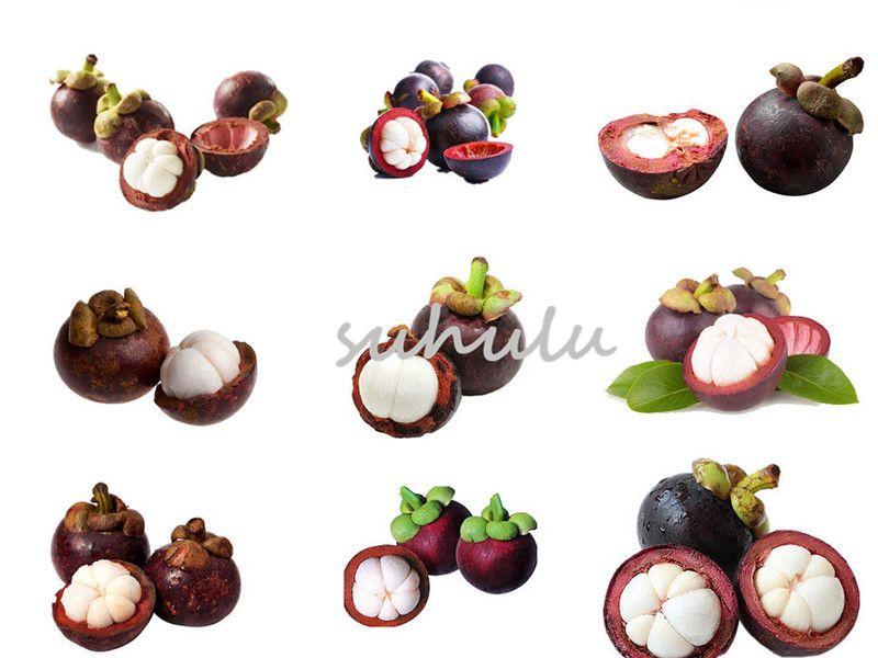 10 Pcs Purple Thailand Mangosteen Seeds Bonsai Natural Anticancer Queen Of  Tropical Fruit Seeds Vegetables Flowers Pots