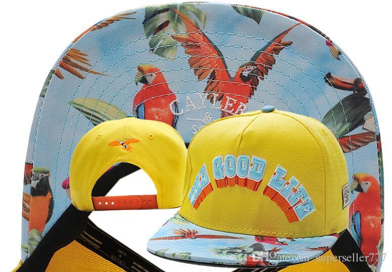 Cayler   Sons Caps   Hats Snapbacks The Good Life Snapback d27a60d631c