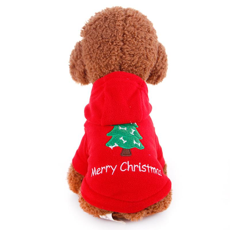 Christmas Dog Two Legged Sweater Dog Out Of The Sweater Puppies Pet