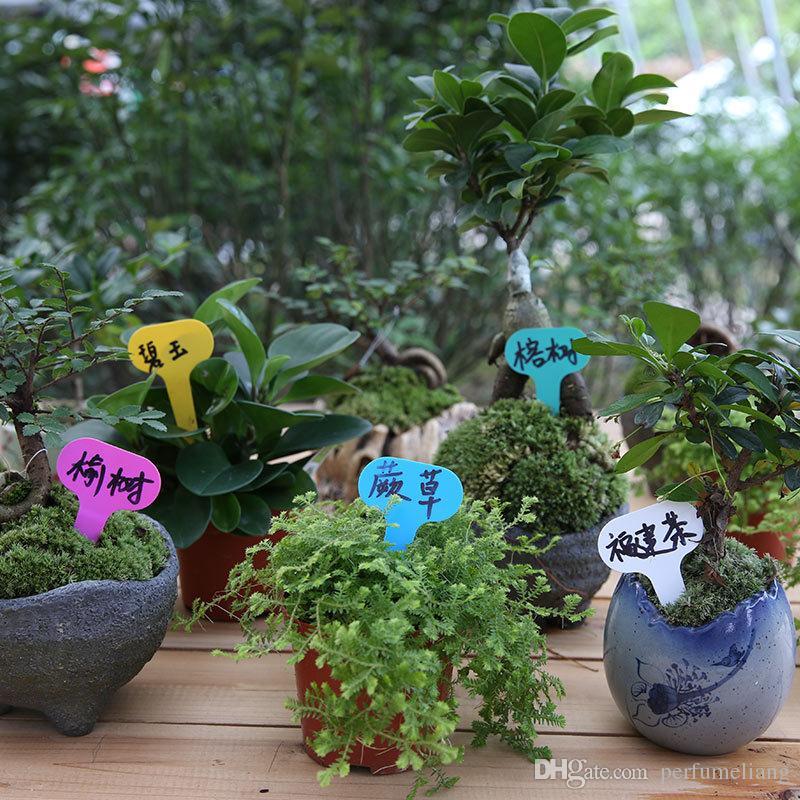 T-typ Kunststoff Pflanzen Tag Garten Garten Label Pflanze Blume Kindergarten Label Tag Marker Dicke Tags ZA6013