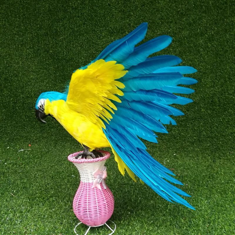 Come sapere quanto grande il tuo uccello sarà