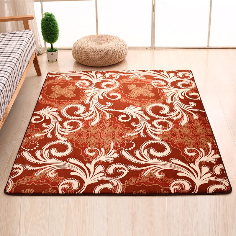 SunnyRain 1-Piece Coral Fleece Printed Indoor Rugs And Carpets For Living  Room Slip Resistance Carpet For Bedroom Area Rug