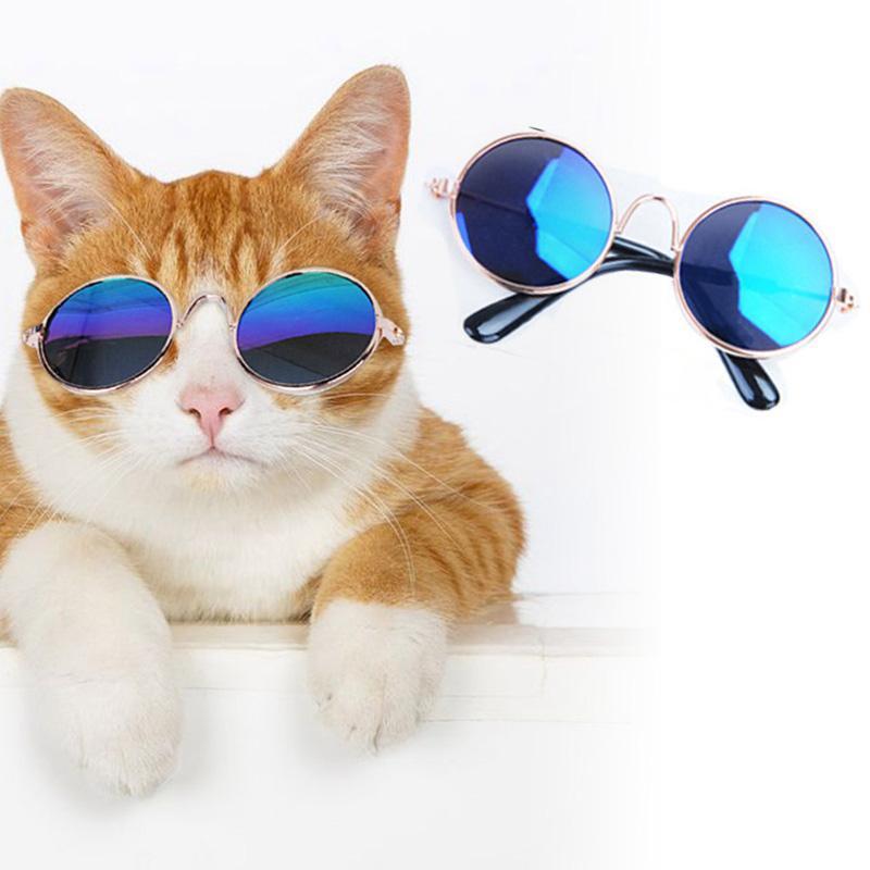 bac016e47f5b97 Acheter Belle Pet Chat Lunettes Chien Lunettes Produits Pour Animaux Pour  Petit Chien Chat Eye Wear Chien Lunettes De Soleil Pet Accessoires Couleur  ...