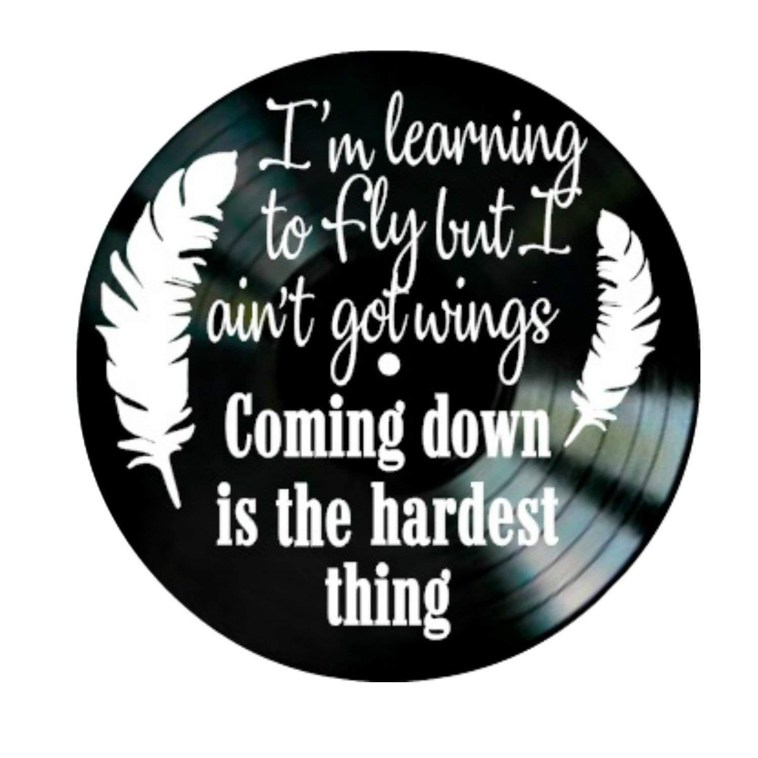 diy gift for 2018 Learnin To Fly song lyrics by Tom Petty on a Vinyl Record  Album Wall Artwork