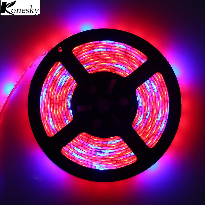 Professional Lighting Light Strip Hydroponic Led Light Strip High Brightness Grow Light Eco-friendly Indoor Flower Led Strip