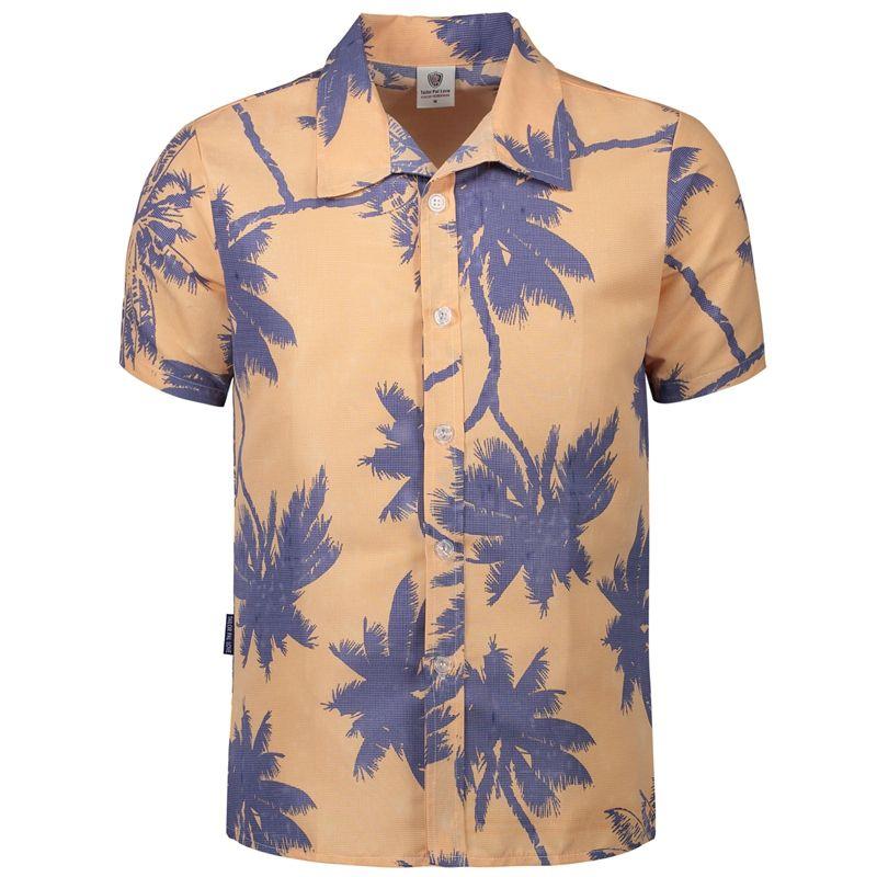 c0434c6cbc35 2019 Mens Hawaiian Shirt Male Casual Camisa Masculina Printed Beach Shirts  Short Sleeve Brand Clothing Asian Size M 5XL From Hongxigua, $35.07 |  DHgate.Com