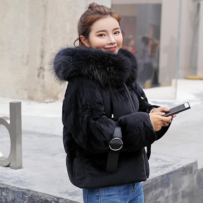 Sijimz Femme Acheter Vestes Mode D'hiver Courte Veste 2018 8wXPd