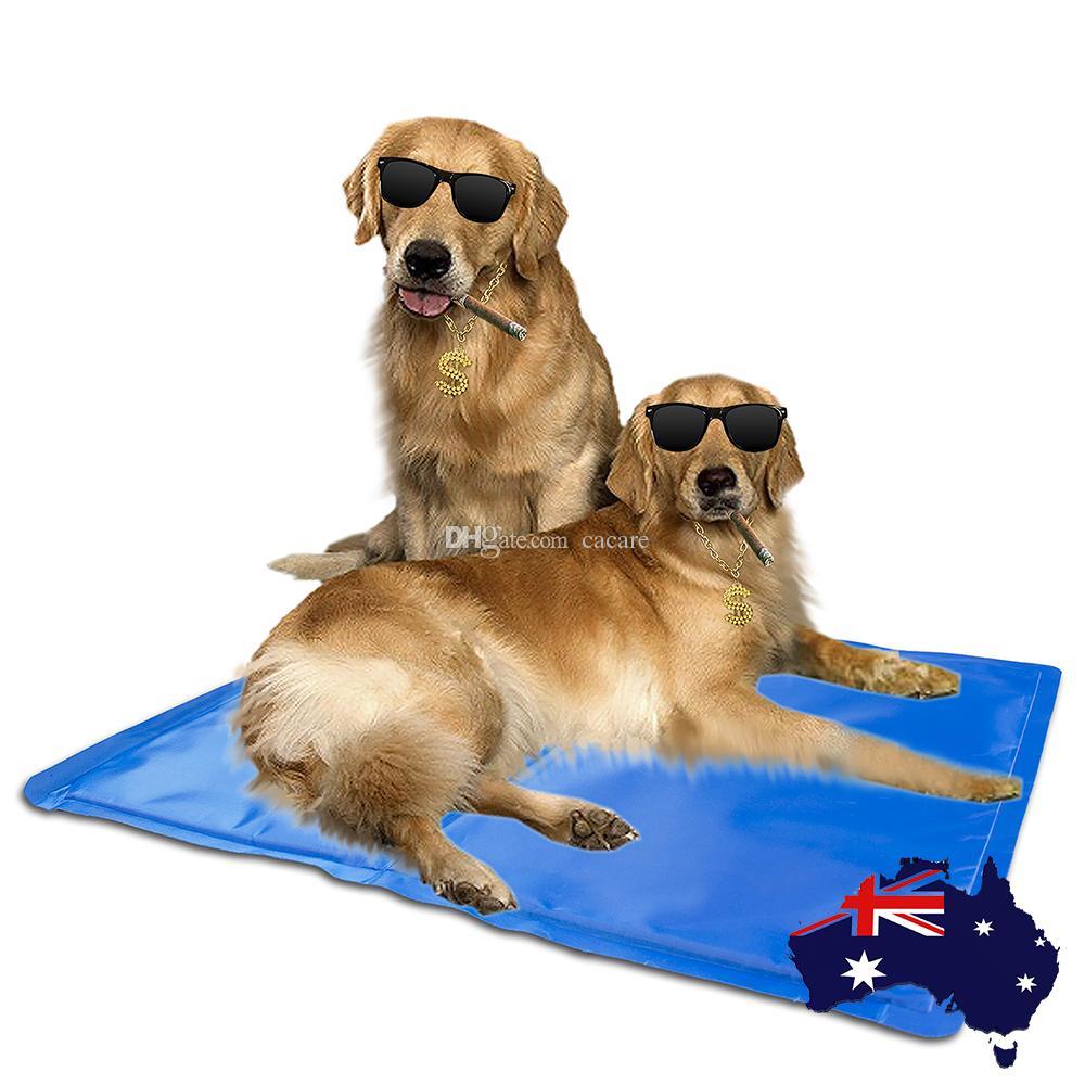 mate pets microfibre pet mat dinner food and