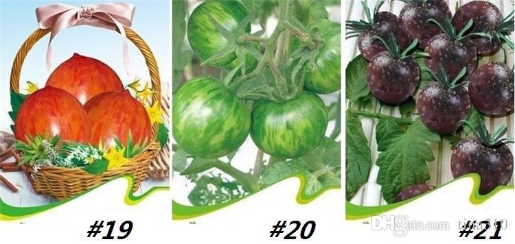 قوس قزح جديد الطماطم والبذور، بذور الطماطم نادرة، بونساي العضوية بذور الفاكهة الخضروات، النبات المحفوظ بوعاء لI185 حديقة المنزل