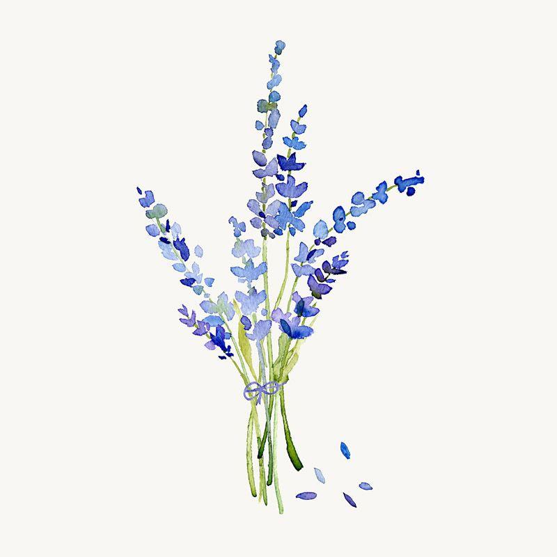 Satın Al Modern Minimalist Suluboya çiçek Yaprak çiçek A4 Sanat