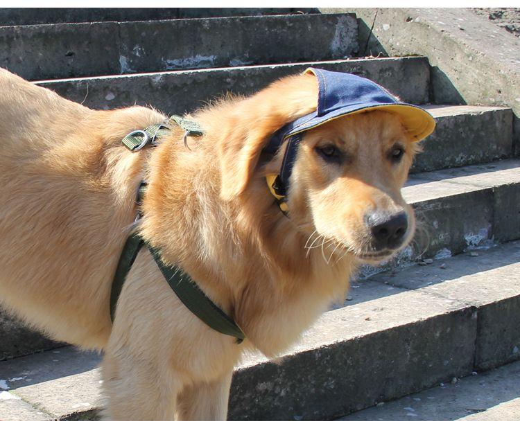 Cool Denim Dog Hat Pet Cat Baseball Cap Casual Outdoor Pet Hat For Small Medium Large Dogs Travel Hiking Pet DHL