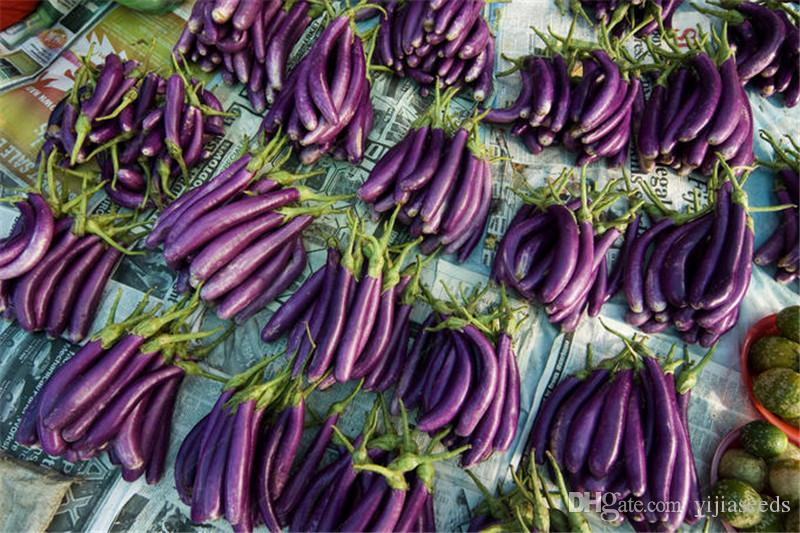 /bag purple eggplant seeds,bonsai Organic seeds vegetables,Balcony or courtyard potted plant Edible food seeds for garden