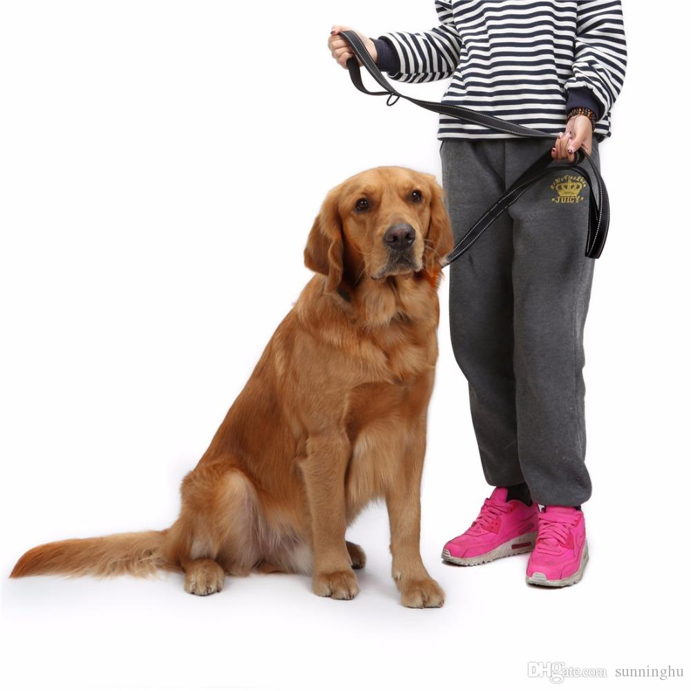2018 Dog Leash 2 Handles Nylon Padded Double Handle Leash For ...