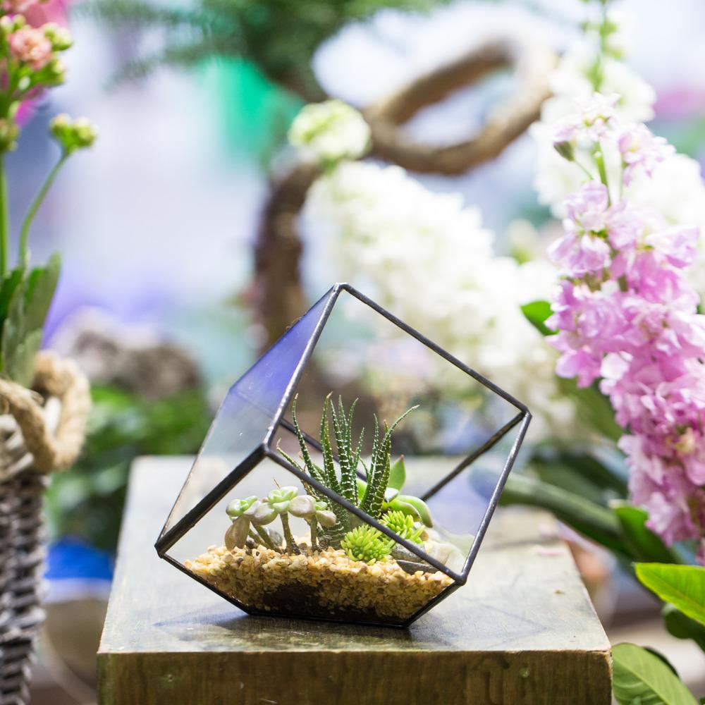 2018 Arden Pots Planters Flower Pots Planters Modern Gardening Indoor Flower  Pot Cube Glass Terrarium Plants Planter For Succulents Geometric .