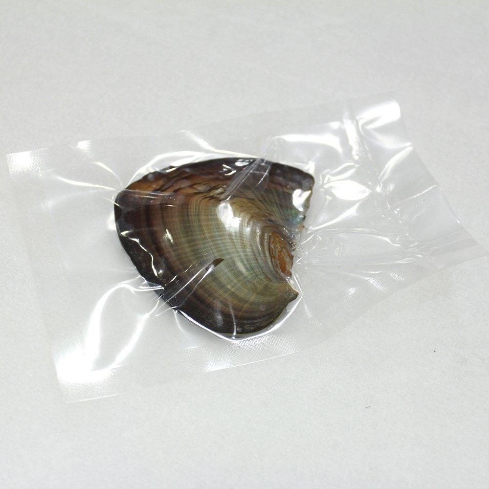 Ücretsiz nakliye 2018 DIY yuvarlak Oyster Pearl 6-7mm 25 Renk Tatlısu Doğal inci Hediye DIY Takı süslemeler Vakum Paketleme Toptan
