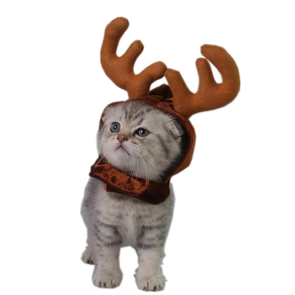 Christmas Antler Cap For Cats Xmas Hat For Small Dogs Funny Cat ...