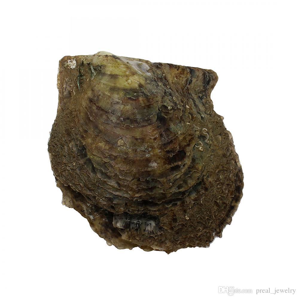 Água do mar Akoya Ostra Pérola Rodada 5-7mm 20 cor misturada Natural pérola Amor Presente DIY Decorações Jóias Embalagem A Vácuo Por Atacado 2018 Novo