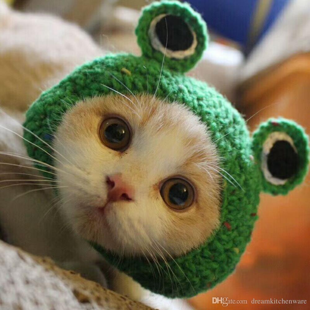 22f72bf543 Compre Venda Quente Mão De Malha Pet Chapéus Sapo Chapéu Do Gato Para Cão  Chapéu Hairband Cap Cão Verde Bonito Acessórios Para Cães Pequenos De ...