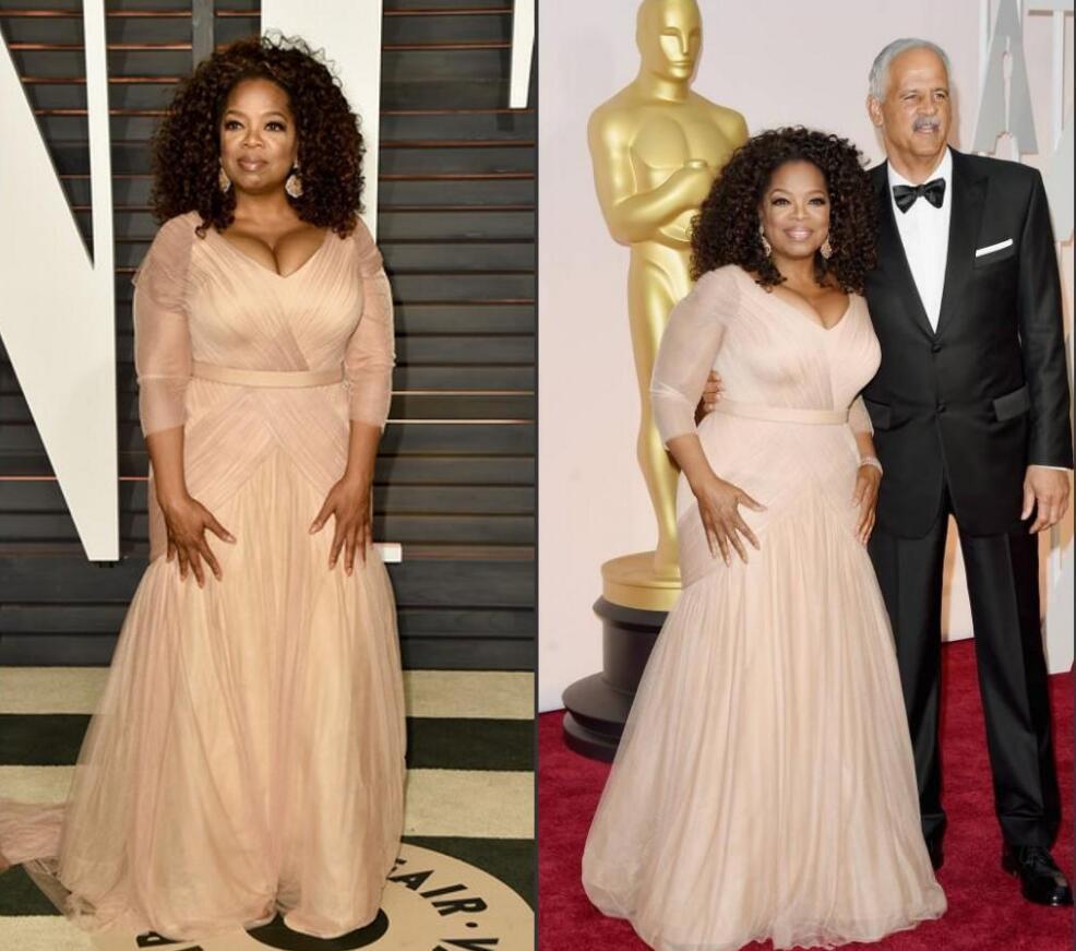 2019 Elegant Oprah Winfrey Celebrity Evening Dresses plus size v neck sheath chiffon with long sleeves mother of bride groom dresses