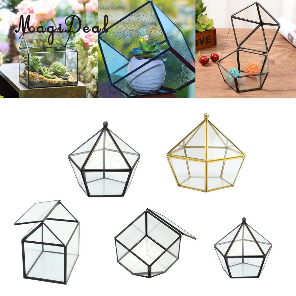 Magideal Glass Geometric Terrarium Tabletop Planter For Air Plants